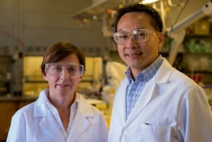 Dr. Kimberly Heck and Dr. Michael Wong (Courtesy Jeff Fitlow/Rice University)