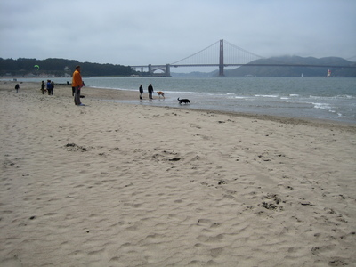 I forgot to tell you about the beach and the Golden Gate Bridge!